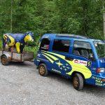 divertido-furgoneta-vaca-remolque-subaru-impreza